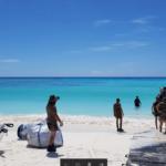 Beach access mat military