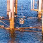 Diaphragms closures platform offshore